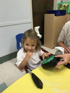 Pediatric Augmentative and Alternative Communication (AAC